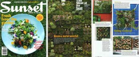 Sunset Magazine Vertical Garden article with 2 of my gardens.